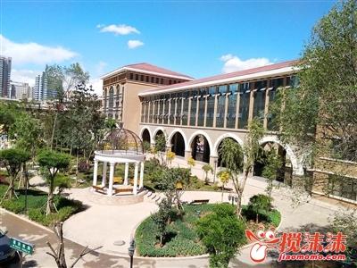 西宁市第二十一中学-丽夏都添光彩 西宁茶座 西宁搅沫沫社区图片