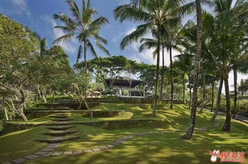 热带雨林中的伊甸园-隐逸在巴厘岛香气弥漫的丛林 游山玩水 西宁搅沫图片