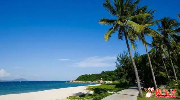 支洲岛、西岛、热带天堂森林公园、呀诺达热带雨林、南湾猴岛、大小图片
