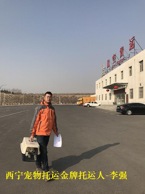 A西宁宠物托运人李强 (12).JPG