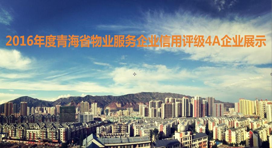 2016年度青海省物业服务企业信用评级4A企业展示