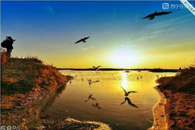 中讯社黄云,都说摄影是一门光和影的艺术,光,是摄影