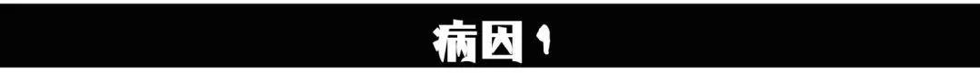 海鲜+火锅+日料+烤肉!西宁235万吃货正向这里逼近!