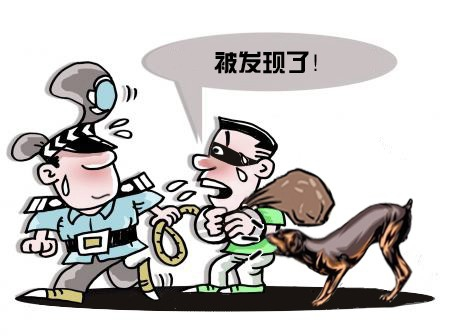 """一人作案12起 """"民和大盗""""在青海民和落网"""