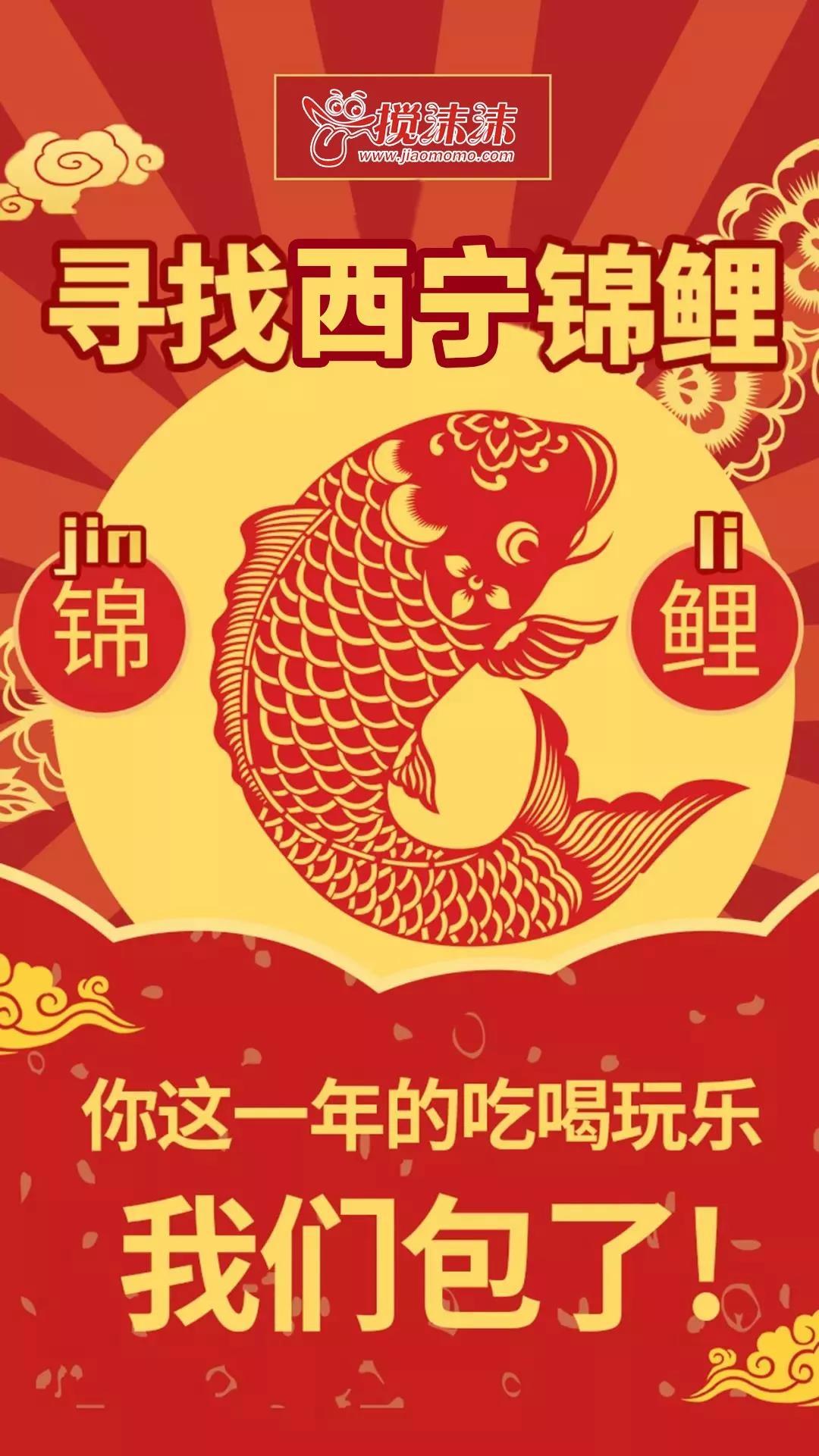 只宠爱一人,西宁搅沫沫锦鲤在哪里?