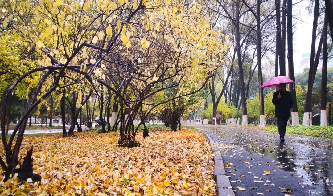 西宁人民公园50年来最大改造,建成啥模样了?