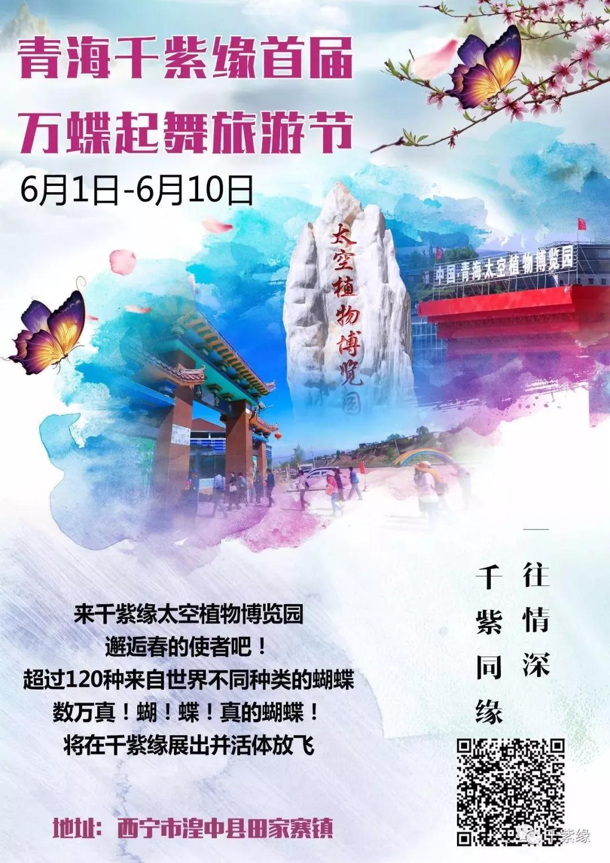 2019西宁首次万只蝴蝶齐放飞, 还有标本免费送……