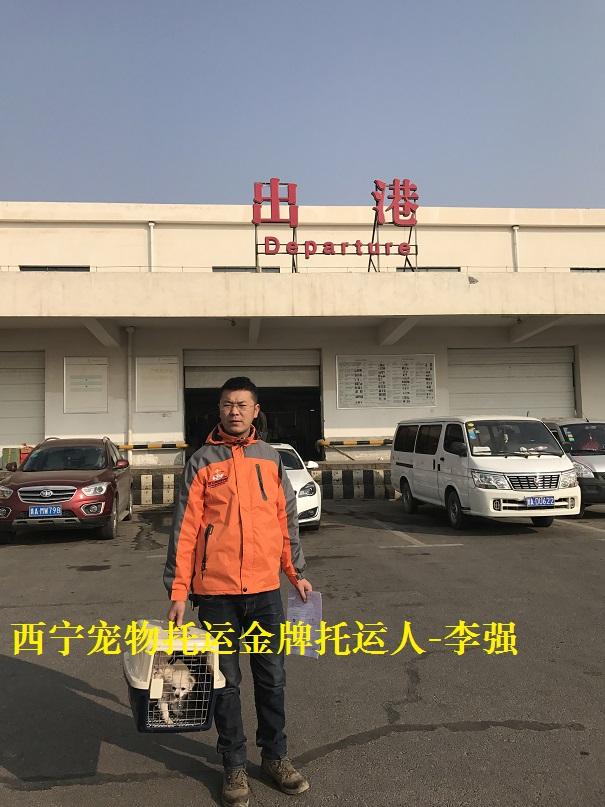 A西宁宠物托运人李强 (11).JPG