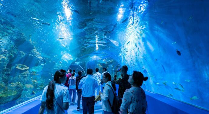 西宁海洋馆万吨海水从何而来